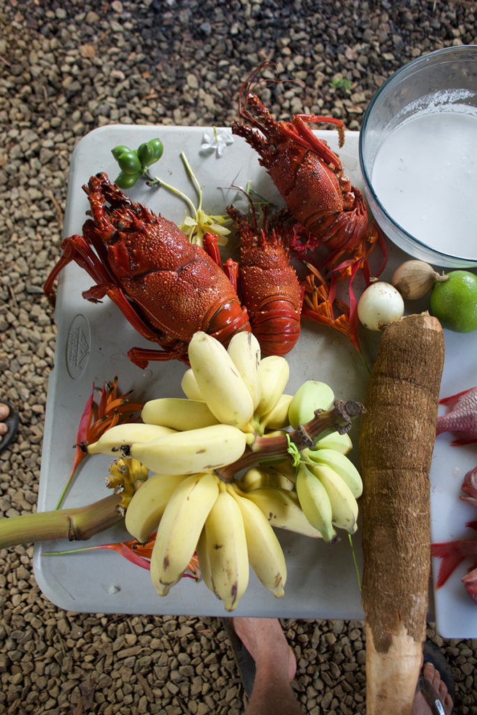 <h6>Lobsters and fresh Coconut milk